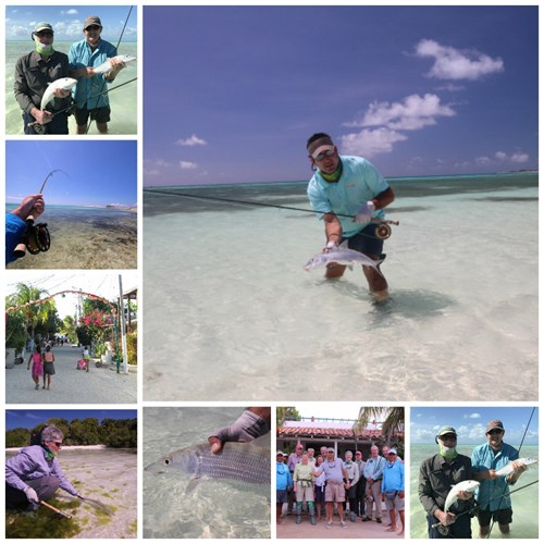 Los Roques 2017 Collage